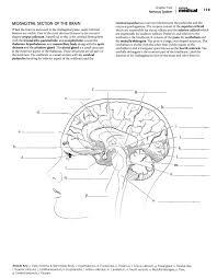 Anatomy Coloring Book Kaplan Medical