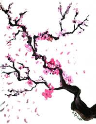 Cherry Blossom Tree Drawing Cherry Blossom Tree Branch Drawing Ngorongclub