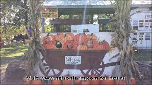 Rombachs Pumpkin Patch Hours by Nelson Farm In Litchfield Mn Youtube