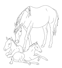Realistic Horse Coloring Pages Cooloring Com Of And Foal Horses Foals