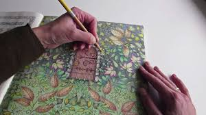 Adult Coloring Books And The Rise Of Peter Pan Market