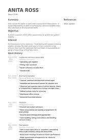 Customer Service Associate Resume Example