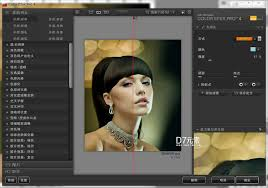 Color Efex Pro 4 Cracked With Crack Keyseriallicense For Pc Mac