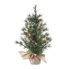 Kurt Adler 2 Ft Silver Tip Pine Pre Lit Desktop Christmas Tree