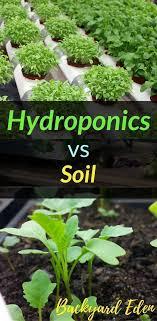 Hydroponics vs Soil Hydroponics DIY Hydroponics