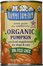 Organic Pumpkin For Dogs Diarrhea by Amazon Com Nummy Tum Tum Pure Pumpkin For Pets 15 Ounce Pack