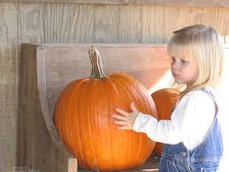 Pumpkin Patch Edmond Oklahoma by Free Things To Do In Oklahoma City