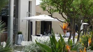 100 Sezz Hotel St Tropez Christophe Ponceau The Gardens Of Saint Blog
