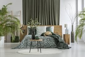 grüner schlafen sind pflanzen im schlafzimmer gefährlich