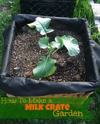 Milk Crate Garden Heres What Youll Need