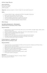Sample Kitchen Helper Resume Styles Free
