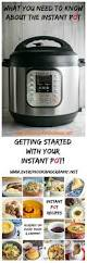 What Is The Best Christmas Tree Food by Did Santa Put An Instant Pot Under The Christmas Tree For You This