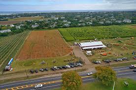 Best Pumpkin Apple Picking Long Island Ny by Guide To The Best Long Island Pumpkin Picking Spots Long Island