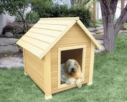 how to build a dog house sort through the confusion