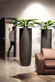 hohes pflanzgefäß pflanzkübel pflanzen schlafzimmer pflanzen