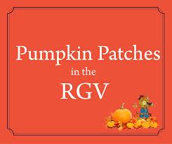 Pumpkin Patch Austin Tx 2015 by Rgv Pumpkin Patches 2016