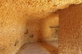 huitres fossiles de sainte croix du mont falaise et grottes c