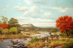 Thrasher Deer Peaceful Feeding Quite Country Colours Safe Drinking Autumn Water Mountains Nature Trees Grasses Change