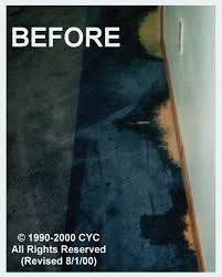 How To Fix Bleach Stains On Carpet by Carpet Dyeing By Color Your Carpet Carpet Dyeing Experts Bleach