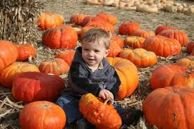 South Reno Pumpkin Patch by Charming Pumpkin Patches In Nevada Are Picture Perfect For A Fall Day