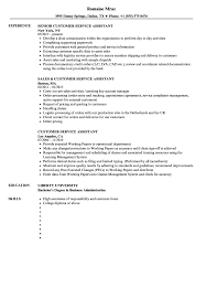 Download Customer Service Assistant Resume Sample As Image File
