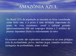 amazonia si e social força aérea brasileira em defesa da amazônia azul ppt carregar