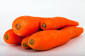 Homemade Fertilizer For Pumpkins by The Best Fertilizers For Carrots