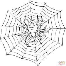 Dibujo De Escalofriante Araña En Su Tela Para Colorear