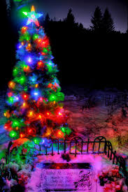 Prelit Christmas Tree That Lifts Itself by Libby Man Takes U0027spirit Of Christmas U0027 To Unexpected Places