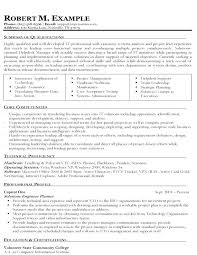 Sample Professional Profile For Resume Of It Solutions Engineering Example