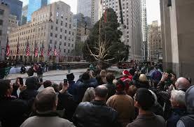 Christmas Tree Rockefeller Center Live Cam by Rockefeller Center Christmas Tree 2012 Spruce That Survived Sandy