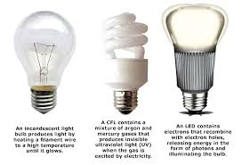 how much does it cost to run a light bulb for one year cost