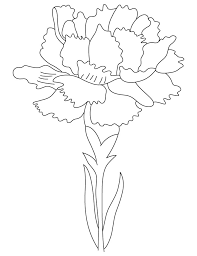 Carnation Birth Flower Coloring Page