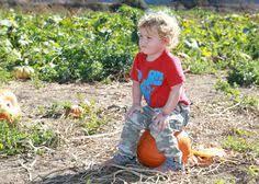 Peter Pumpkin Patch Petaluma by The Great Peter Pumpkin Patch Petaluma Ca Pumpkinpatch Fall