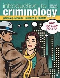 Introduction To Criminology Why Do They It By Pamela J Schram