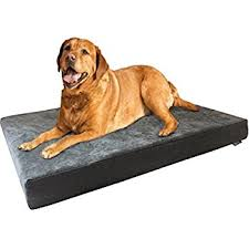 Arlee Home Fashions Dog Bed by Amazon Com Dogbed4less Extra Large Orthopedic Memory Foam Dog
