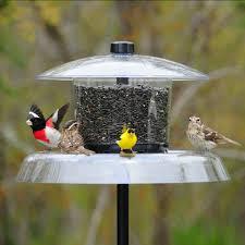 Jagunda Squirrel Proof Bird Feeder JG