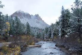 Christmas Tree Permits Colorado Buffalo Creek by Pike And San Isabel National Forests Cimarron And Comanche
