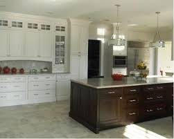 Omega Dynasty Cabinets Sizes by Omega Doorstyles Plainfield Dynasty Houzz
