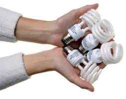 light bulb disposing light bulbs compact fluorescent energy