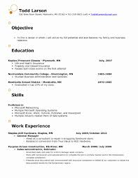 Resume Samples For Retail Store Jobs Professional Associate Sample Examples Clerk Clothing