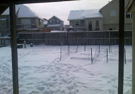 Backyard Snow - Dog Run | Photo Page - Everystockphoto Dogfriendly Back Yard Dogscaped Yards Pinterest Dog Superior Fence Cstruction And Repair Kennels Roseville Ca Domestically Dobson Run Fun Better Than A Ideas For Your Fourlegged Family Backyard Kennel Side Our House Projects Yards Artificial Turf Runs Pet Synthetic Of Illinois Youtube How To Build A Guide Install Image Detail Black Backyards Awesome 25 Best About Outdoor On