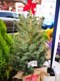 Harrows Artificial Christmas Trees by Harrows Christmas Trees Christmas Decor Ideas