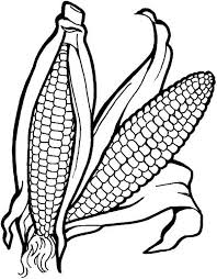 Fruits And Vegetables A Pair Of Corn Coloring Page