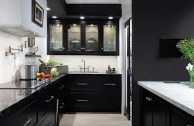 100 Sophisticated Kitchens 25 In Dark Hues Kitchens Black