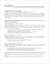Sales Executive Cv Format Pdf Resume Admin Elegant Hr