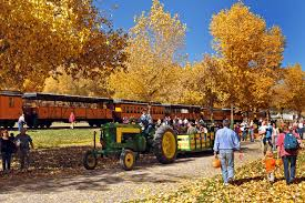 Pumpkin Patch Chatfield Denver by Fall Harvest Fun In Colorado Pumpkins Hayrides And More Westword