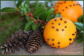 Making Christmas Tree Preservative by Diy Christmas Celebrating The Holidays Naturally