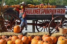 Pumpkin Farms In Flint Michigan by What U0027s New At The Ranch Archives Faulkner U0027s Ranch