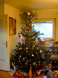 Does Aspirin Work For Christmas Trees by Eine Portlanderin In Deutschland The Adventures Of A Fulbright